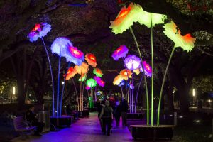 """Enchanted Promenade"" by TILT. Photo credit: Katya Horner for Discovery Green."